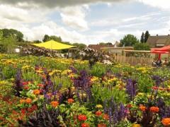 Gartenschau Bild 1