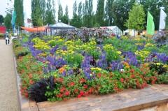 Gartenschau Bild 4