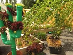 Gartenschau Bild 6